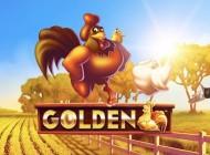 Guldhönor med gyllene ägg