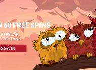 Säkra helgen med free spins!